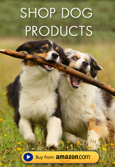 Shop Dog Products on Amazon!