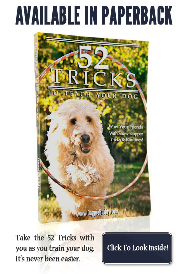 View 52 Tricks to Teach Your Dog on the Amazon Bookstore!