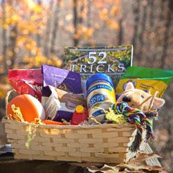 Fall Thankfulness Contest